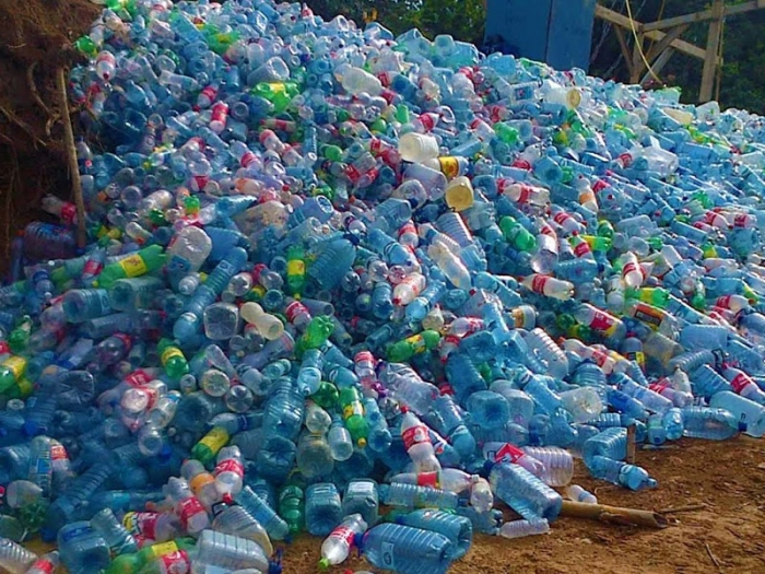 Учёные обнаружили бактерию, которая поедает пластик