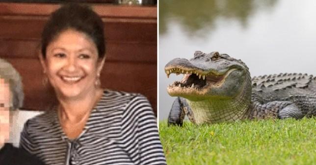 Женщина сказала: «Думаю, что я больше такого никогда бы не сделала» перед тем, как ее убил аллигатор