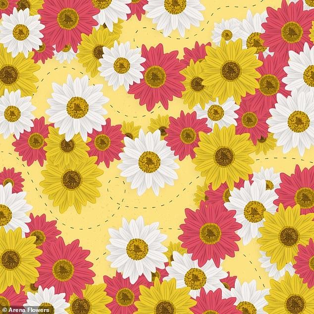 Можете ли вы найти жужжащую пчелу среди цветов? Это опять хитрая загадка. Сдаётесь?