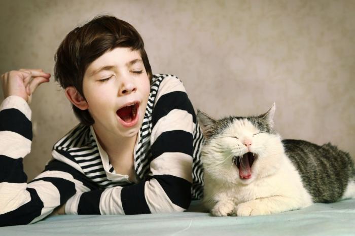 Почему мы зеваем и чем это может быть вызвано?
