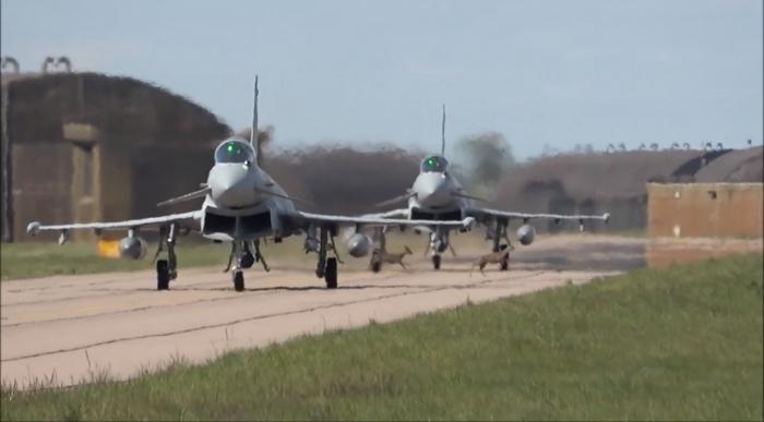 Невероятно, когда олени скачут по взлетно-посадочной полосе базы ВВС, а истребители собираются взлететь