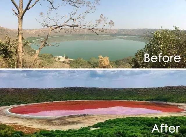 Индийское озеро, образовавшееся от метеорита 50 тысяч лет назад, странным образом стало розовым за одну ночь. До этого озеро было зелёным