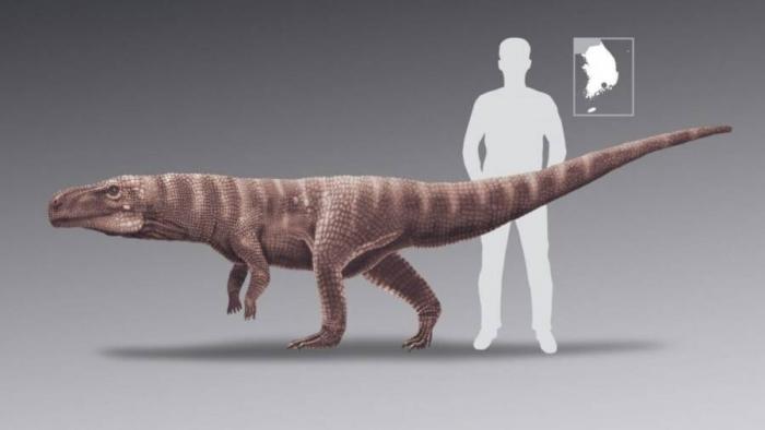 Ученые недавно обнаружили доисторических крокодилов, которые бегали на двух лапах и охотились на динозавров