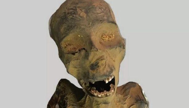 «Кричащая мумия», возможно, умерла в одиночестве от сердечного приступа, решили исследователи