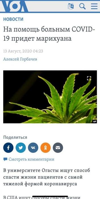 Американцев собираются лечить от COVID-19 при помощи марихуаны