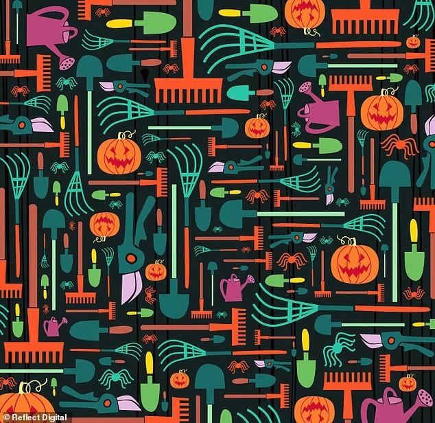 Загадка на Хеллоуин бросает вызов головоломщикам. Найдите ведьму среди садовых инструментов. У вас менее 45 секунд