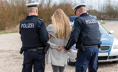 Правительство Австрии собирается дать полиции право вламываться в дома граждан, где собираются более пяти человек
