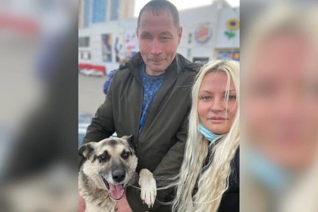 Фейковый сюжет по ТВ помог хозяину воссоединиться со своим пропавшим ранее псом