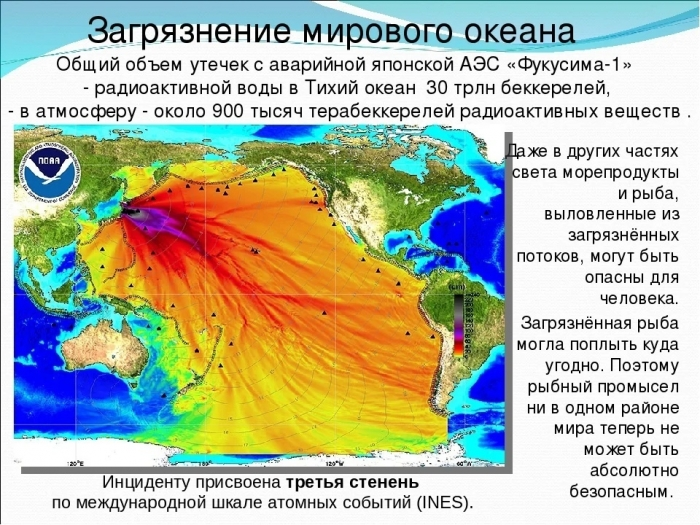 Токсичные новости: Япония решила слить радиоактивную воду в Тихий океан