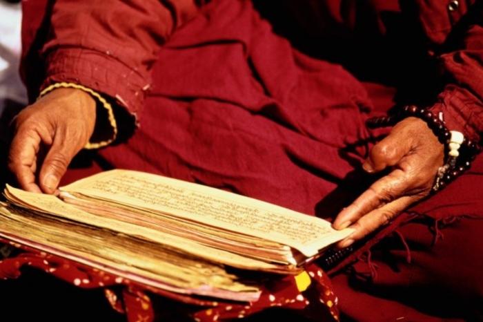 В старинном тибетском тексте в точности описывается нынешняя пандемия коронавируса