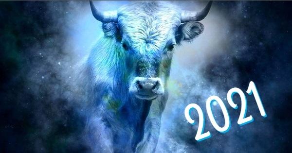 Чего ожидать в Год Белого быка человечеству