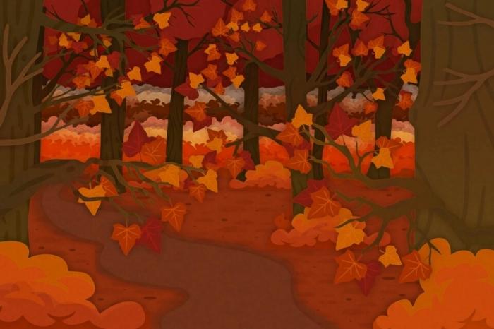 Можете ли вы найти белку на этой хитрой загадке, спрятавшуюся среди осенних листьев