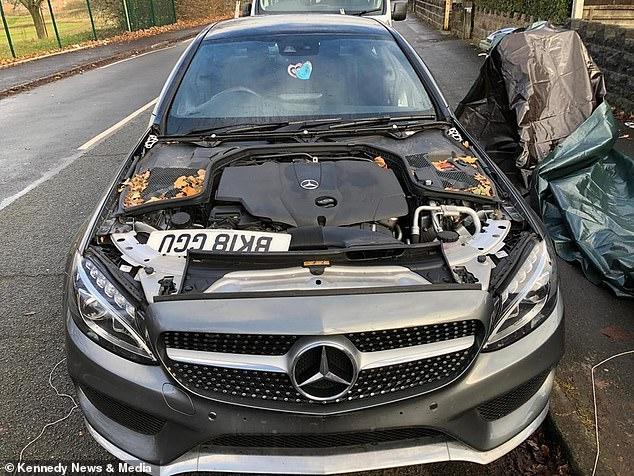 Супруги в испуге проснулись и обнаружили, что их дорогая машина «Мерседес» за ночь была раздета догола ворами