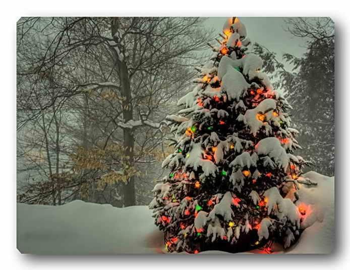 Самые креативные новогодние ёлки мира