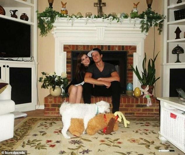 Люди решили поделиться с вами смешными картинками, которые были испорчены очень дерзкими собаками