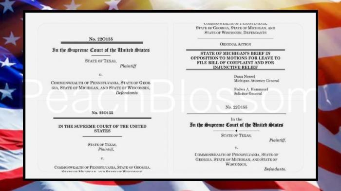 Штат Техас признал американские выборы сфальсифицированными
