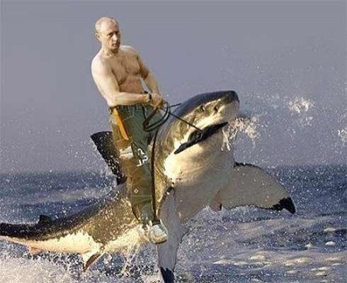 Путин украл у британцев дельфина