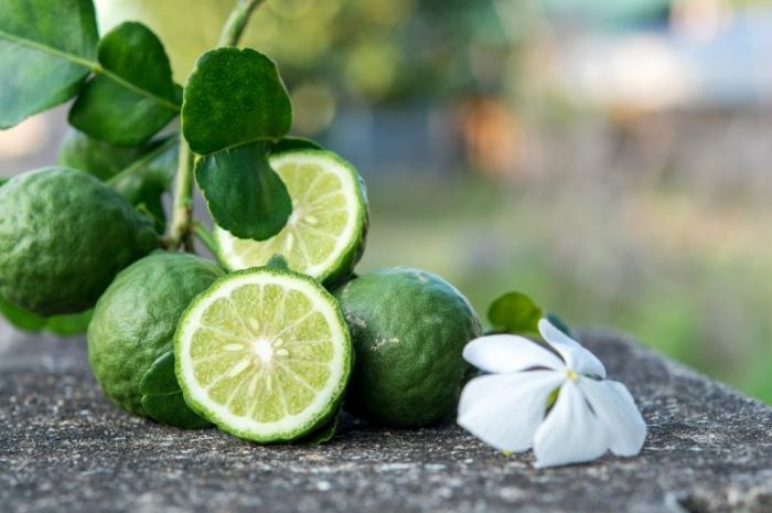 Бергамот, прекрасное лечебное средство против рака