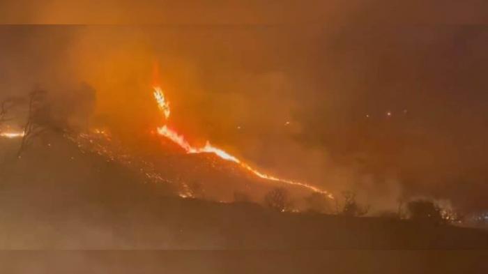 Стабильность – признак мастерства: в Калифорнии продолжаются лесные пожары