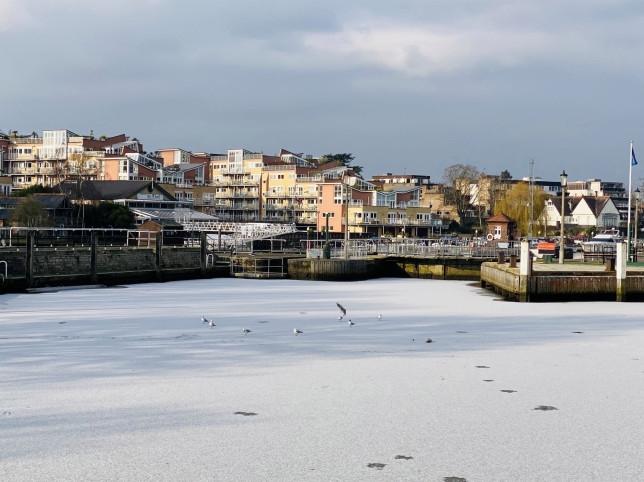 Темза замерзла «впервые за последние десятилетия», когда балтийский холод охватил Лондон
