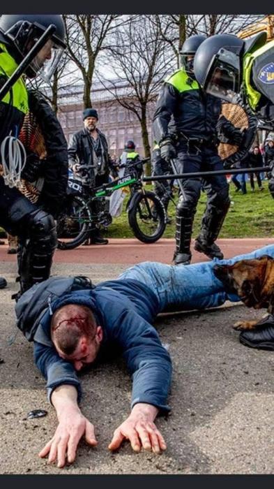 Торжество демократии: в Голландии силовики травили собаками участников незаконного митинга