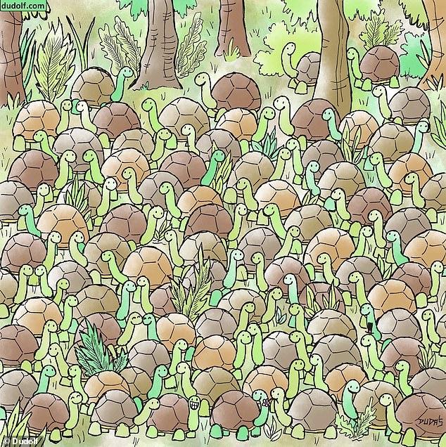 Можете ли вы найти змею среди черепах на этой зрительной загадке?