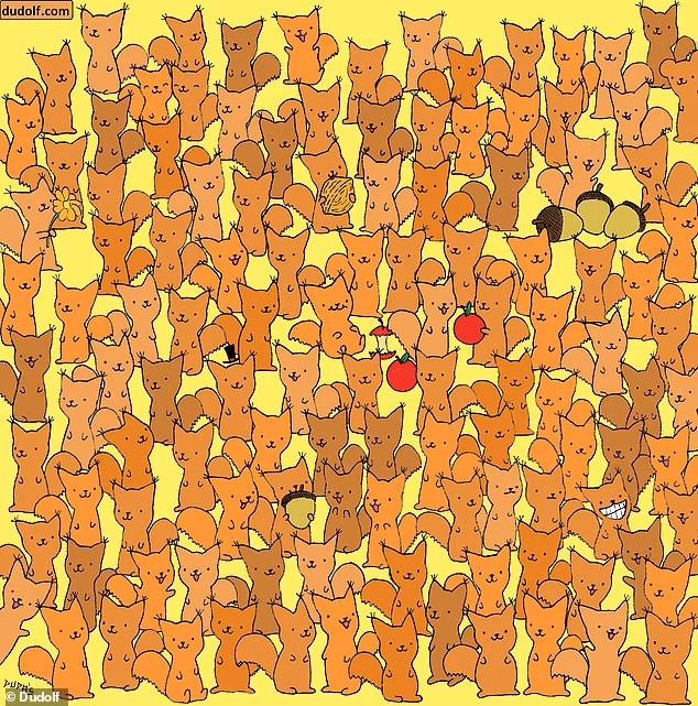 Можете ли вы найти мышь среди белок? Зрительная загадка подвергнет испытанию ваши навыки наблюдения