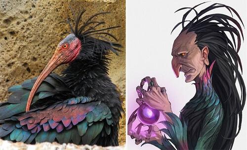 Художник превращает животных в аниме-персонажей