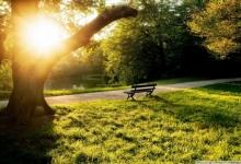 Синоптики рассказали, какими будут весна и лето в России