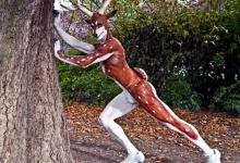 В мире животных: американские охотники подстрелили человека-оленя