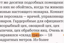 «Склад грязи» во «дворце Путина»: оппозиция вновь выставила себя на посмешище
