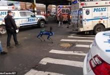 Полиция Нью-Йорка выпустила свою собаку-робота «Дигидога» в Бронксе. Он применил свой искусственный интеллект для поиска