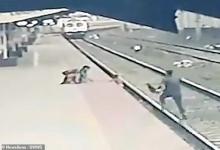В последнюю секунду ребёнка убрали с пути поезда в Индии, благодаря герою-железнодорожнику. Но поволноваться пришлось всем