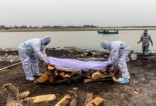 Десятки «зараженных Ковидом» тел, найденных в реке Ганг в Индии, распространяют опасное заболевание в стране