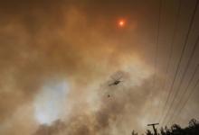 В турецком Бодруме из-за лесного пожара эвакуированы три отеля