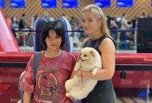 Радикальная стрижка и шрамы по телу: Борисова высылает изменившуюся дочь из страны