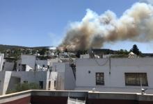 Природный пожар в турецком Бодруме взят под контроль
