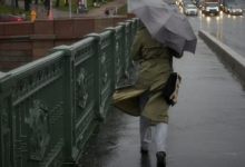 МЧС выпустило штормовое предупреждение в Петербурге