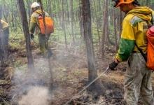 В России число действующих лесных пожаров сократилось до трёх