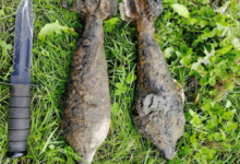 В Ленобласти нашли четыре снаряда времён войны