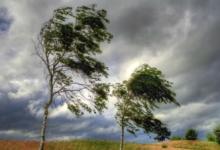 В Челябинской области ожидается усиление ветра до 25 м/с