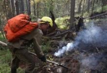 В России за сутки потушили 19 природных пожаров