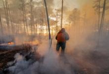 В России за сутки потушили девять лесных пожаров